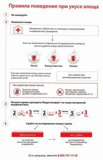 Профилактика клещевого энцефалита